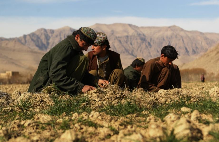 Daily Life In Uruzgan Province, Afghanistan