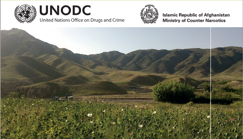 00_UNODC-AOS-2014_Cover