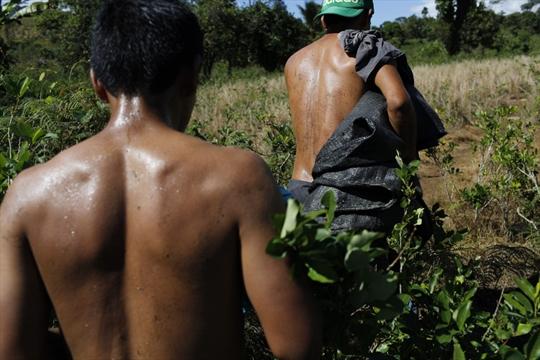 fair-trade-cocaine